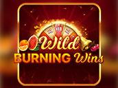 Wild Burning Wins: 5 Lines